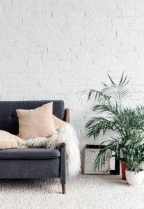 Blog Huisinrichten plant